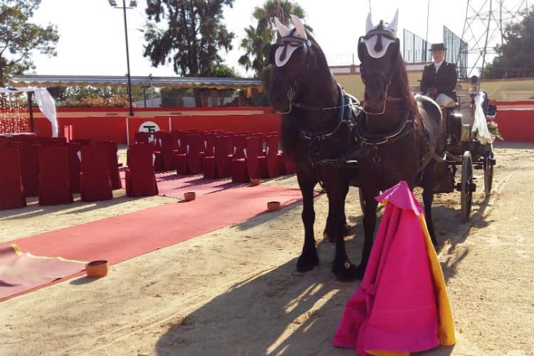 tentadero-la-paz-caballos31