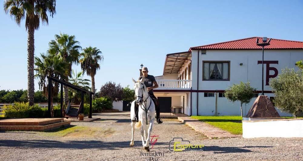 cuarta-concentracion-caballos-tentadero-la-paz-02